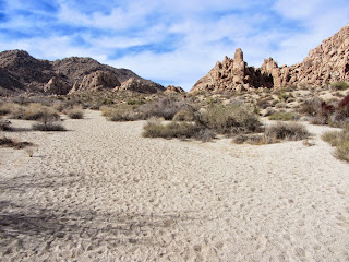 View west from the wash en route to Mount Mel, Indian Cove, Joshua Tree National Park