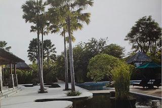 Galeri Taman - Tukang Taman Surabaya 80