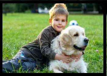 #dog live longer# How To Help Your Dog Live Longer