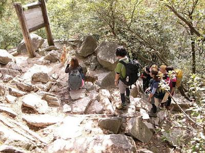 六甲山登山