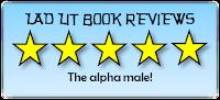 http://stevenscaffardi.blogspot.co.uk/p/the-lad-lit-book-review.html