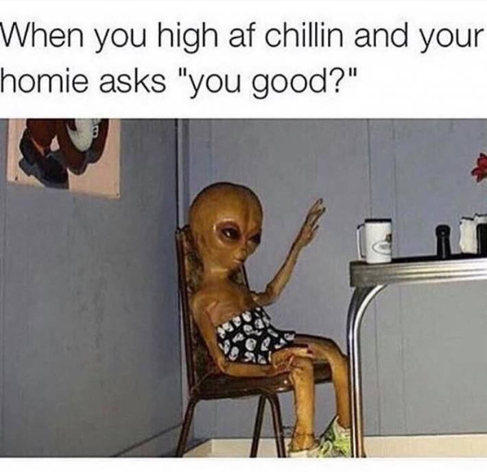 When you are high and chillin