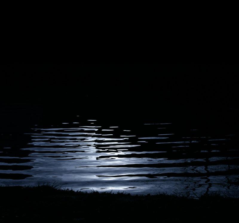 PUMPKINROT.COM: The Blog: Dark Wood, Dark Water