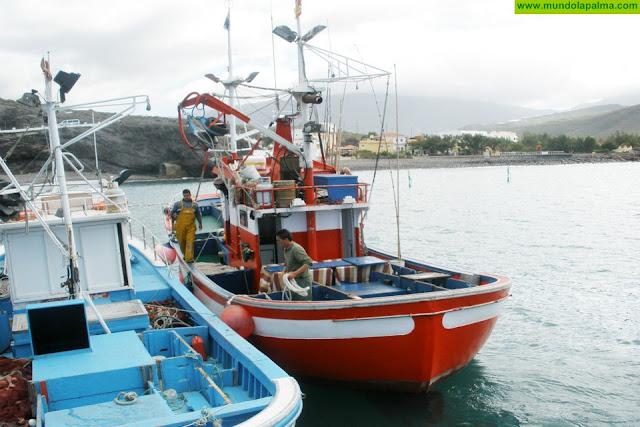 Canarias pide medidas al Estado para que los pescadores de las Islas aprovechen la totalidad de la cuota de atún rojo prevista para 2019