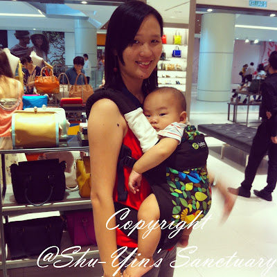 Shu Yins Sanctuary Review Boba 3g Baby Carrier