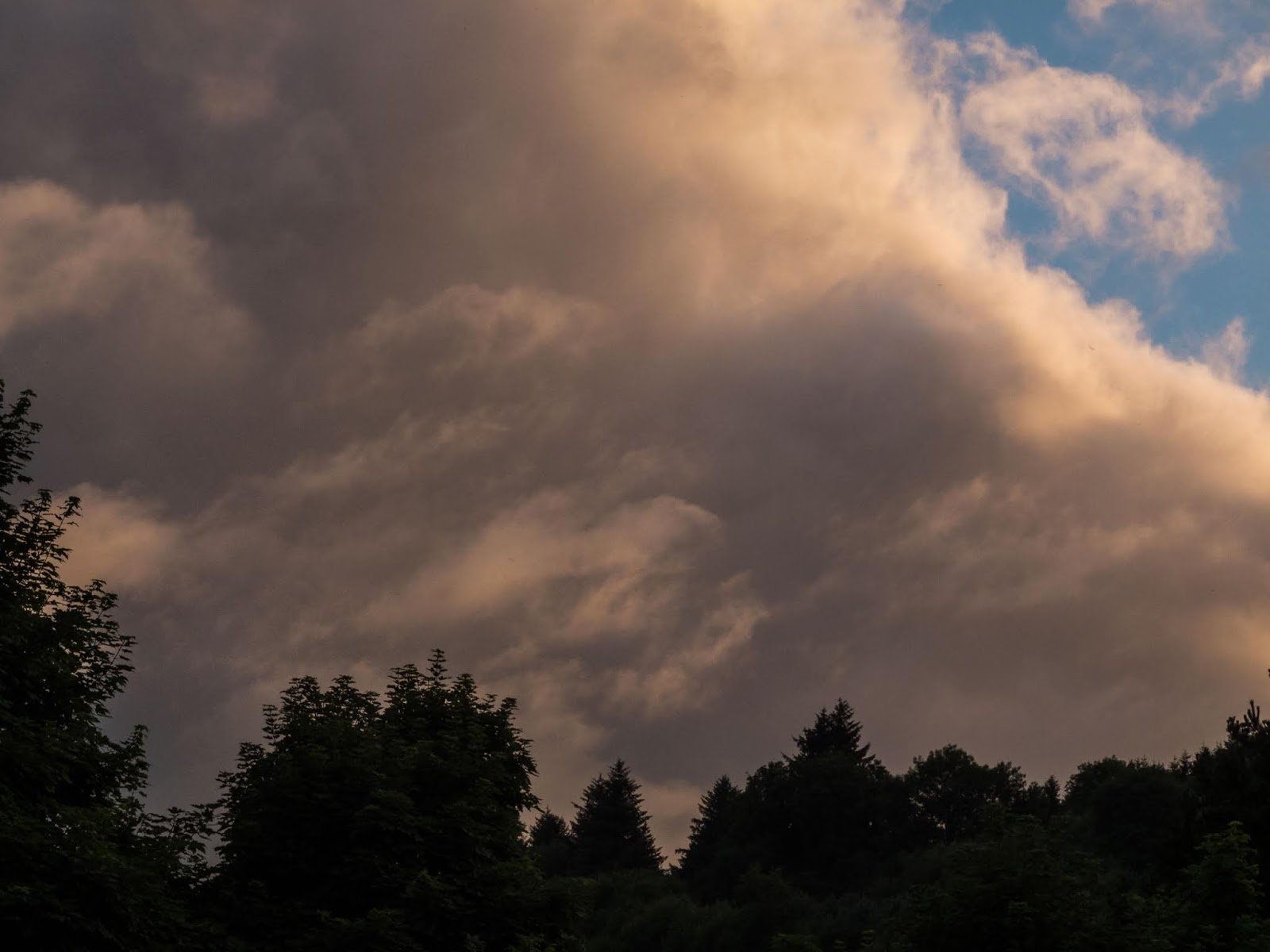 Sunset clouds over a forest canopy in the Boggeragh Mountains in Co.Cork.