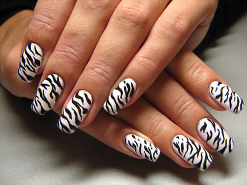 Blue nail art zebra nail designs can be done by you you do not have to go or ask to professional nail art artist for this kind of design as you can do it by prinsesfo Images