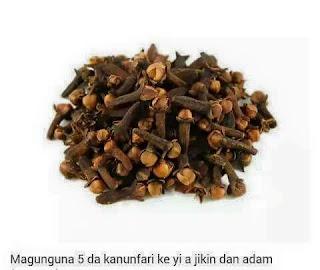 Magunguna 5 da kanunfari ke yi a jikin dan adam (Karanta)