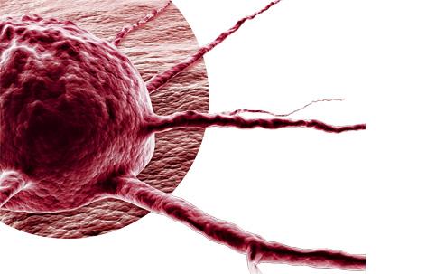 Terapias Contra o Câncer