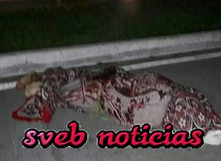Narcoviolencia deja 14 ejecutados este Sabado y Domingo en Guerrero