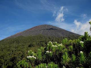 Semeru Trekking, Mount Bromo, Ijen Crater Tour Package 6 Days
