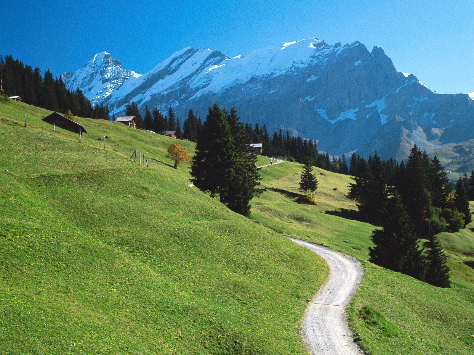 Paesaggio Alpino Con Neve
