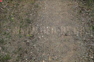 Налибокская пуща. Металлическая руда на дороге
