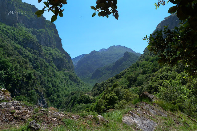 Valle del Río Somiedo - Asturias
