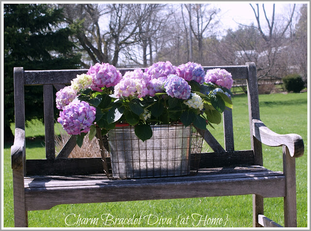 purple white hydrangea plant care floral arrangement galvanized tub wire basket