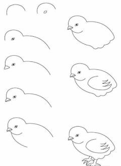 Cara Mudah Menggambar Hewan Secara Bertahap Dilengkapi Dengan Gambar