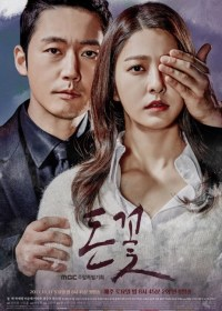 Download Drama Money Flower (2017)
