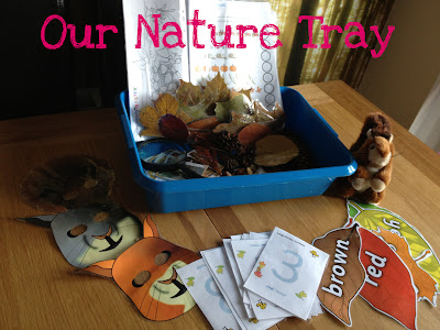 Autumn nature tray