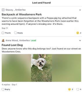 amberlea lost dog Pickering