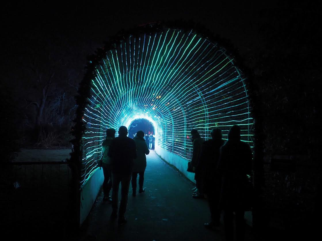 Kew Gardens light tunnel