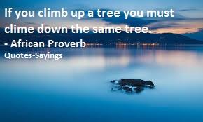 impressive proverbs