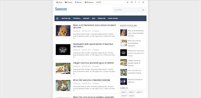 Snowseo Blogger Template