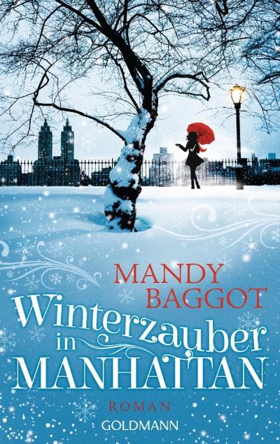 Winterzauber in Manhattan 1