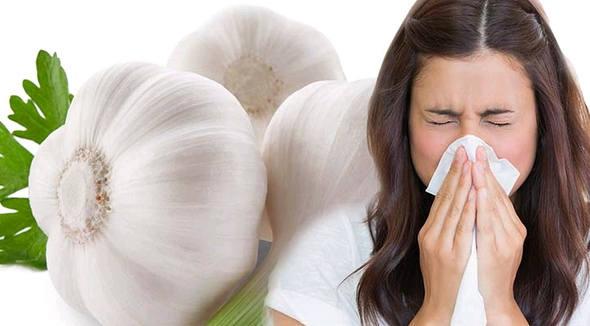 bawang putih untuk batuk dan flu