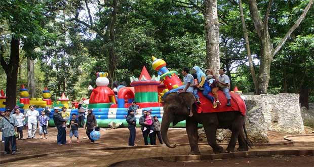 Kebun Binatang Bandung (Foto : sewamobildicirebon.web.id)