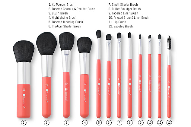 BHCOSMETICS 12PC WILD BRUSH SET