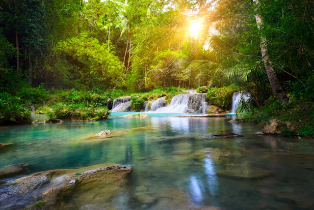 Deep Forest Waterfall, National Park Island of Siquijor, Philippines