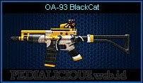 OA-93 BlackCat