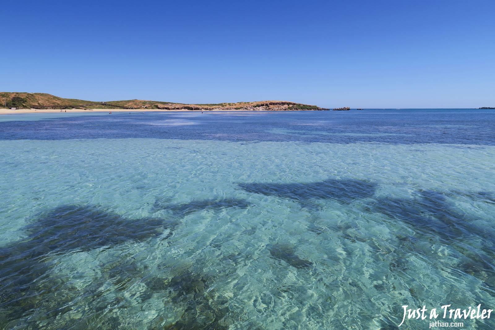 伯斯-景點-推薦-必玩-一日遊-企鵝島-Penguin-Island-遊記-交通-渡輪-旅遊-自由行-Perth