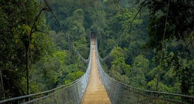 jembatan situ gunung, situ gunung, situ gunung sukabumi, jembatan gantung sukabumi