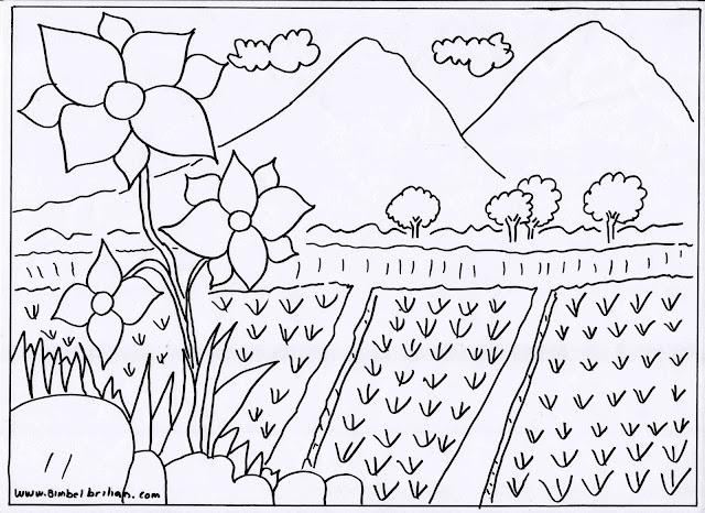 5. Gambar Bunga, Sawah Dan Pegunungan