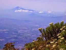 Taman Nasional Gunung Ciremai