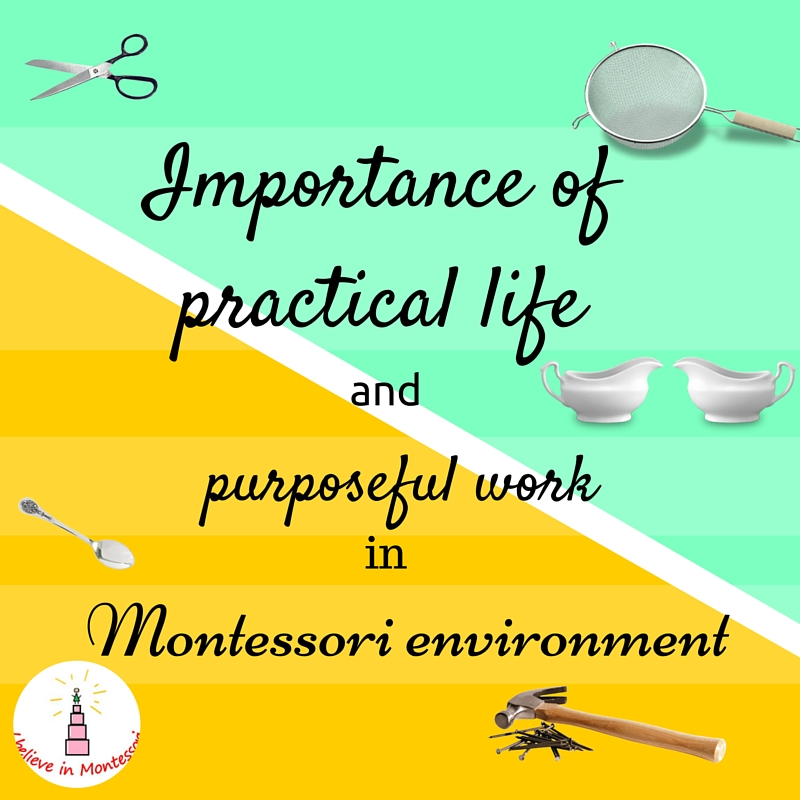 importance of practical education An introduction to practical life there is another area which encompasses all four areas and which is a very important part of practical life, namely food.