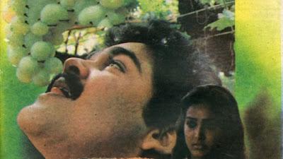 Malayalam actress Shari hot images