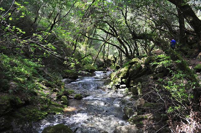 Cataract Creek Trail trek hike tips blog california