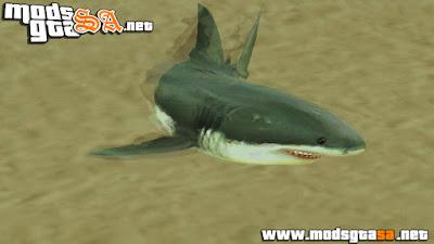 Mod Tubarão na Praia de Santa Maria