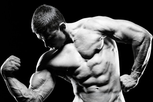Building Muscle Tips