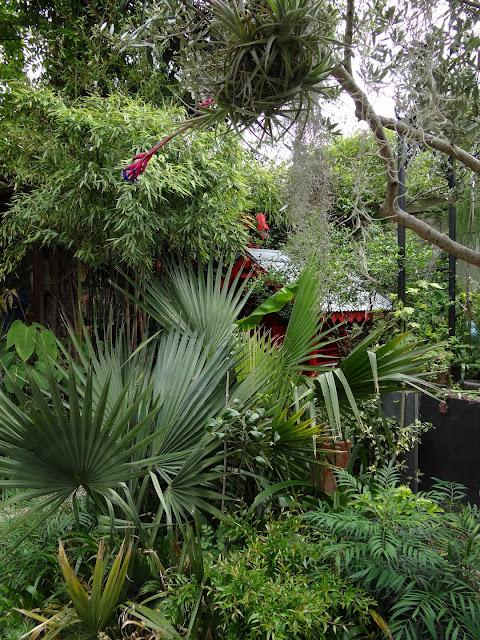(07) Le jardin de Bésignoles - Privas - Page 2 DSC08149