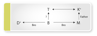 Blood Relation Questions
