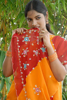 Keerthi Saree Pictures (30)