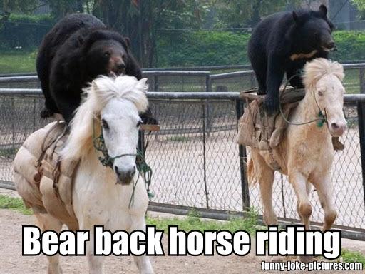 Bear Back Horse Riding