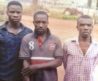 Photos: Three men confess during burial ceremony to killing deceased with juju over disputed land in Enugu