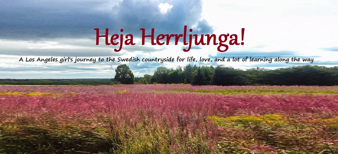 dating sweden herrljunga)