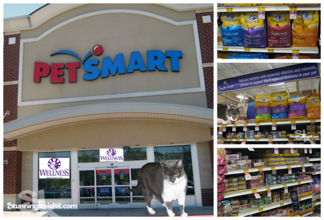 CK Celebrates The Year of the Cat With Wellness® Complete Health™ #HealthyMeetsHappy #ad