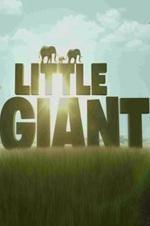 Watch Little Giant Online Free 2016 Putlocker