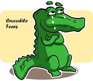 Meaning and sentence of the idiom ' Crocodile tears'